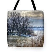 Little Island In Winter Tote Bag