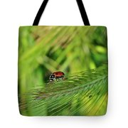 Little Lady Tote Bag