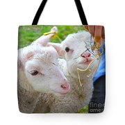 Little Lambs Eat Straw Not Ivy Tote Bag