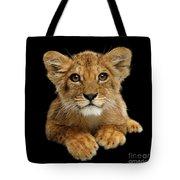 Little Lion Tote Bag by Sergey Taran
