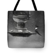 Little Male Hummingbird In Charcoal Tote Bag