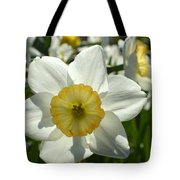 Little Miss White 1 Tote Bag