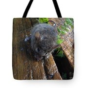 Little 'mighty Mouse' Tote Bag