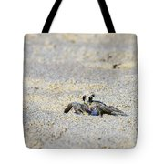 Little Nag's Head Crab Tote Bag