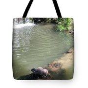 Little Otters At Jersey Zoo Tote Bag