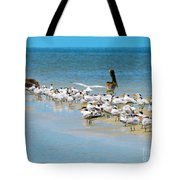 Little Pavilion Residents Tote Bag