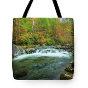 Little Pigeon River Flows In Autumn In The Smoky Mountains Tote Bag