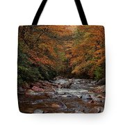 Little Pigeon River In Autumn Tote Bag