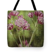 Little Pink Jewels Tote Bag