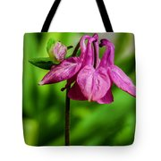 Little Pink Lamp Tote Bag