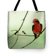 Little Red Beauty - Vermilion Flycatcher Tote Bag