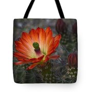 Little Red Claret Cup Flower  Tote Bag