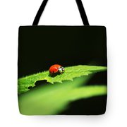 Little Red Ladybug On Green Leaf Tote Bag by Christina Rollo