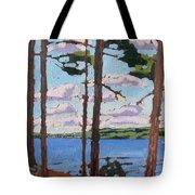 Little Rideau Lake Tote Bag