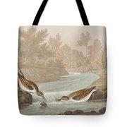 Little Sandpiper Tote Bag