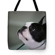 Little Show Off Tote Bag