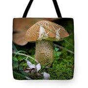 Little Shroom  Tote Bag