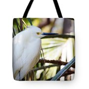 Little Snowy Egret Tote Bag