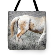 Little Tail Gater Tote Bag