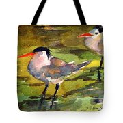 Little Terns Tote Bag