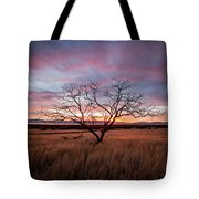 Little Tree Sunset Tote Bag by Wesley Aston