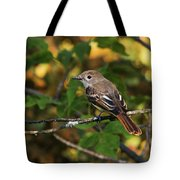Little Tweet Tote Bag