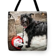 Little Wet Puppy In French Quarter Tote Bag
