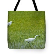 Little White Egret Tote Bag