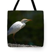 Little White Heron Tote Bag