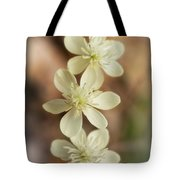 Little White Wildflowers  Tote Bag