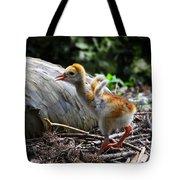 Little Wings Tote Bag