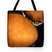 Live Abalone Tote Bag