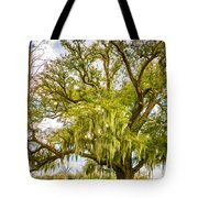 Live Oak And Spanish Moss 2 - Paint Tote Bag