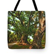 Live Oak Lane Tote Bag by Steve Harrington