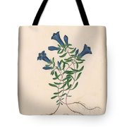 Liverpool Gentian With One Insect Tote Bag