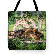 Living In Harmony - Lion Tote Bag