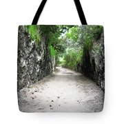 Living Walls Tote Bag