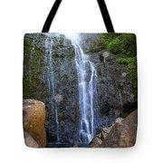 Living Waters - Wailua Falls Maui Tote Bag
