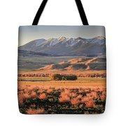 Livingston Montana Tote Bag