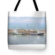 Livingstone Cove Tote Bag