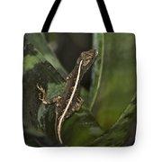 Lizard 2 Tote Bag