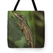 Lizard 3 Tote Bag