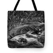 Lizard-bw Tote Bag
