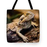 Lizard - Id 16217-202733-1873 Tote Bag