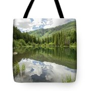 Lizard Lake Reflections Tote Bag