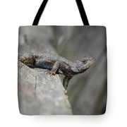 Lizard On Wood Fence Shiloh Tennessee 031620161698 Tote Bag