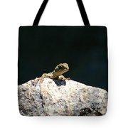 Lizard Rock Tote Bag