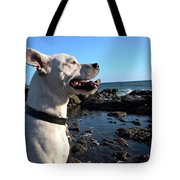 Lizzy's Sunset Tote Bag