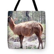 Llamalovely Tote Bag