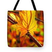 Leaving Autumn Tote Bag